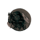 Sombra de Ojos Nº10 Evolux
