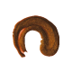 Brillo de Labios Voluminizador Nº10 Evolux