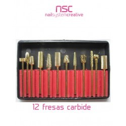 12 FRESAS DE CARBIDE NSC