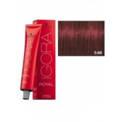 Tinte IGORA ROYAL 5-88 Castaño Claro Rojo Intenso 60ml